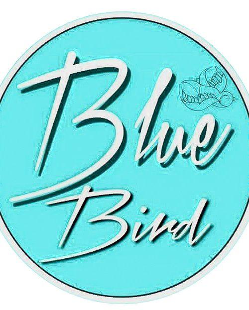 Blue Bird Bacalar